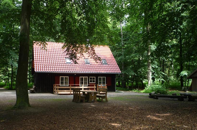 Dachsbau Kellenhusen, Ferienhaus, Schleswig-Holsteinische Landesforsten