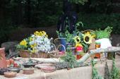 Sommerfest auf dem Bungsberg