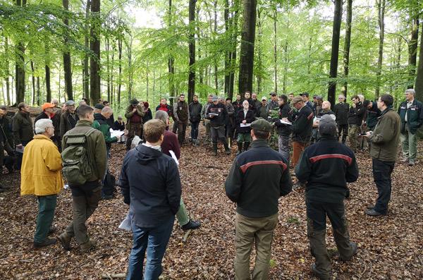 Tagesexkursion des Nordwestdeutschen Forstvereins im Revier Hahnheide