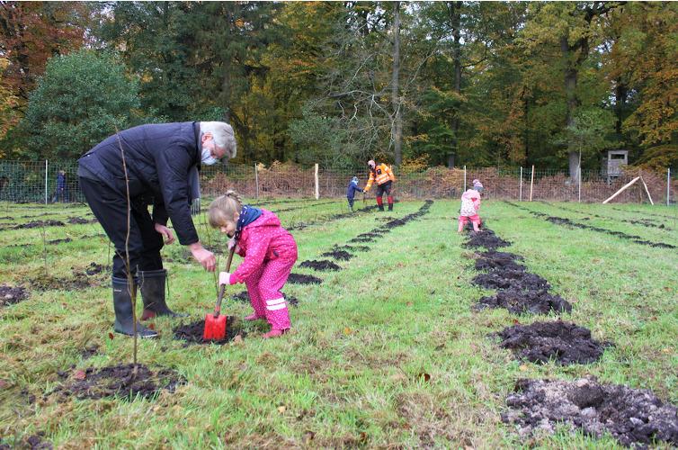 Bäume pflanzen mit Kindern