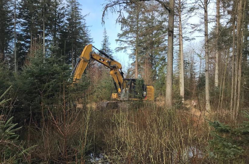 Gewässersanierung im Wald