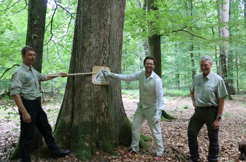 Forstminister Albrecht markiert den 80.000sten Habitatbaum