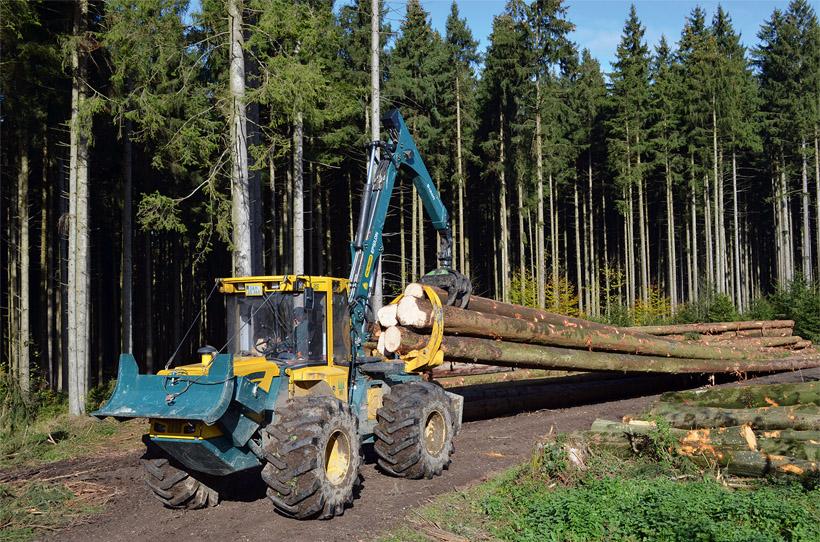 Skidder in den Wäldern der Schleswig-Holsteinischen Landesforsten