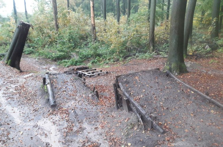 Illegal errichteter Mountainbike-Trail