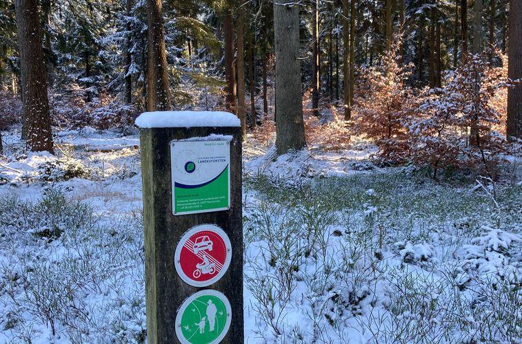 Hinweisschild am Waldeingang
