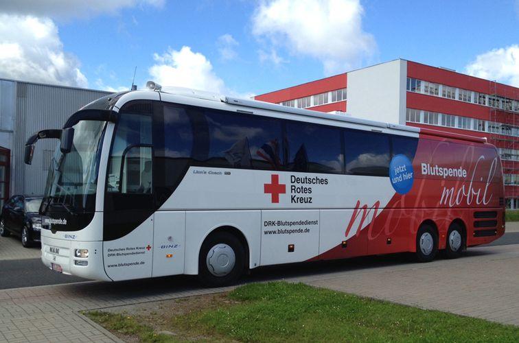 Wald-Gesundheitstag mit dem Deutschen Roten Kreuz