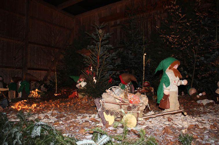 Große Waldweihnacht – mit über 90 Aktionen im Weihnachtswunderwald!