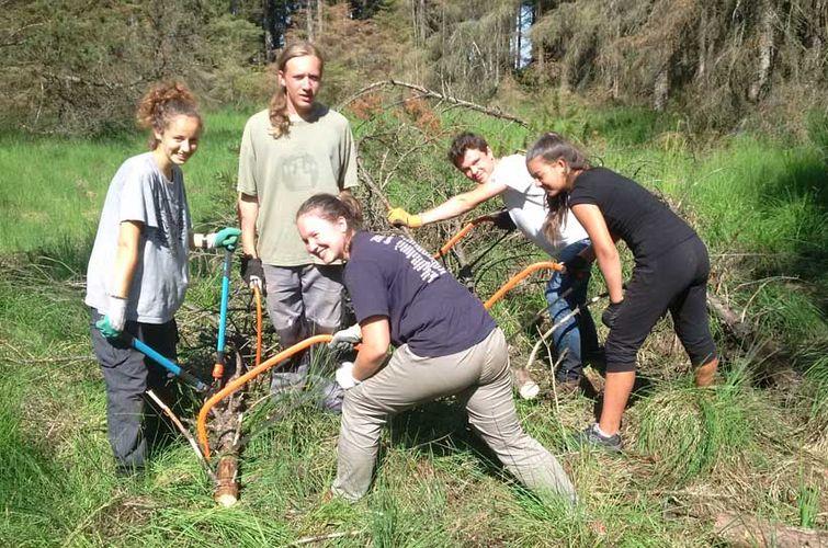 Internationales Jugendcamp im Jugendwaldheim Süderlügum