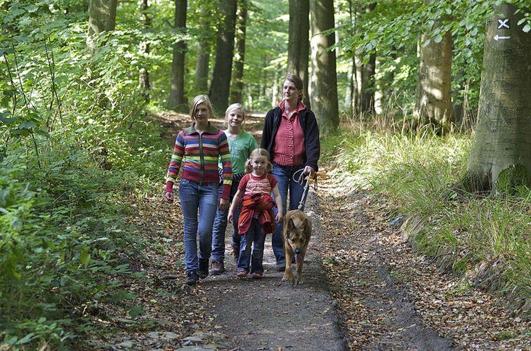 Familienwanderung im Herbst
