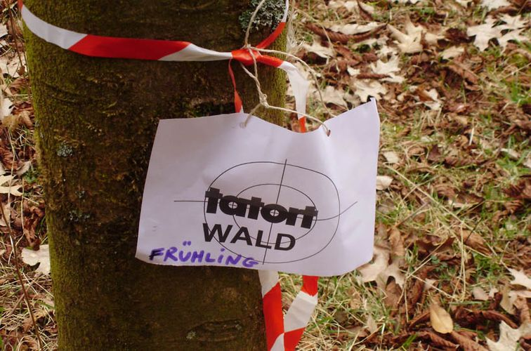 Waldpädagogik-Zertifikat