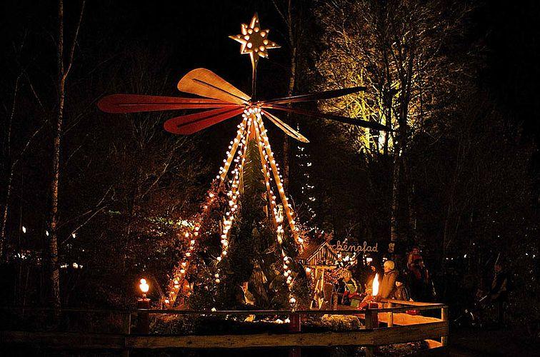 Große Waldweihnacht im ErlebnisWald Trappenkamp
