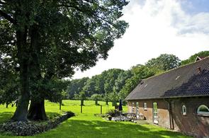 Ferienhaus Glashütte, Haus und Garten, Schleswig-Holsteinische Landesforsten