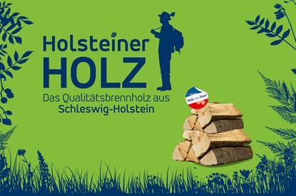 Holsteiner Holz, Schleswig-Holsteinische Landesforsten