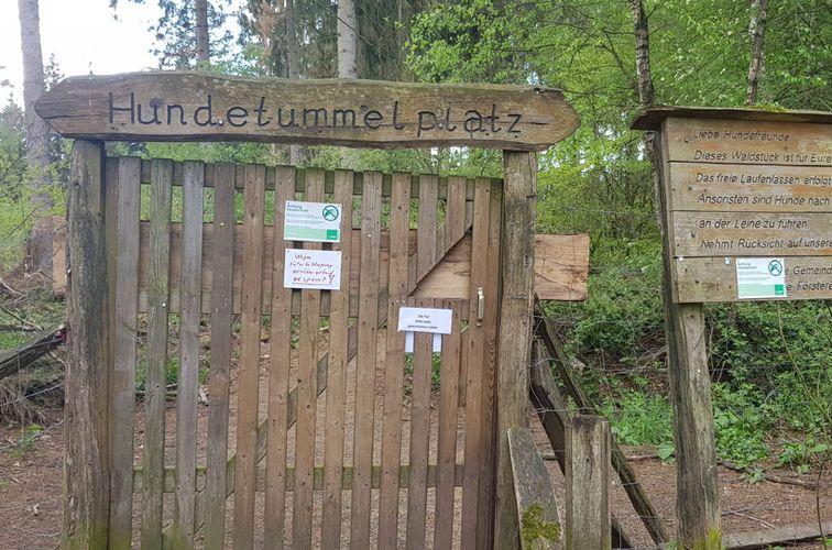 Hundeauslauf im Waldort Meeschensee