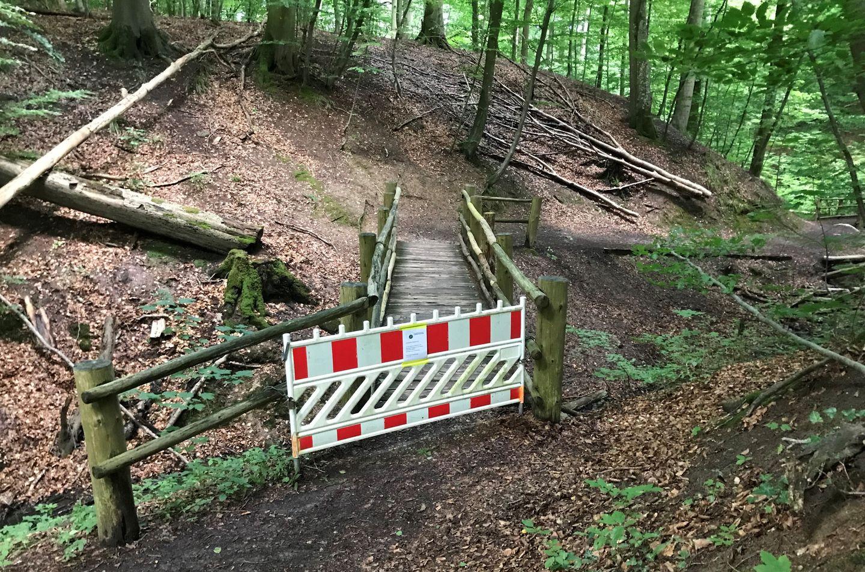Holzbrücke im Tiergarten Schleswig